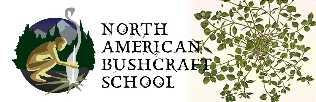 North American Bushcraft School